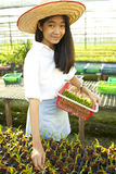 Orchid farm girl Stock Photos