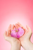 Orchid in the female hands stock images