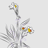 Orchid Flower Arrangement Line Drawing Royalty Free Stock Image