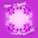 Orchid flower background. Royalty Free Stock Photography