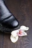Orchid flower crashed with black shoe Stock Image