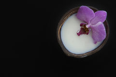 Orchid flower in milk in a coconut on a dark background, preparation for a spa treatment, relaxing atmosphere, postcard. Stock Photo