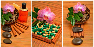 Orchid flower, pebbles in the coconut shell, soap, shower gel an Stock Images