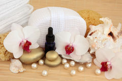 Orchid Spa Treatment Royalty Free Stock Images