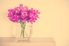 Orchid flower in vase Stock Photo