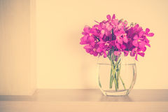 Orchid flower in vase Royalty Free Stock Images