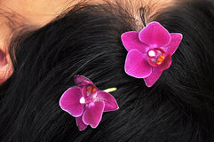 Orchid flowers in brunette woman's hair Stock Image