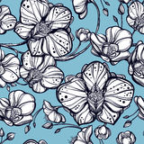 Orchid flowers seamless pattern. Royalty Free Stock Photography