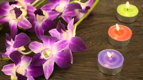 Orchid flowers and tin candles Royalty Free Stock Photo
