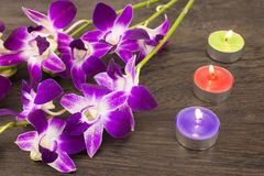 Orchid flowers and tin candles Royalty Free Stock Images