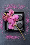 Orchid flowers and zen stones. Spa Royalty Free Stock Photography