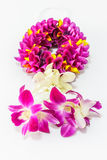 Orchid garland Stock Images