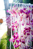 Orchid garlands by a restaurant Stock Photo
