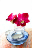 Orchid in glass vase with aromatherapy candle. Red oriental orchid in glass vase with aromatherapy candle, part of health and beauty spa setting royalty free stock photo