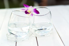 Orchid on Glass water nature palce Royalty Free Stock Image