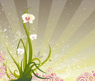 Orchid Grunge stock illustration