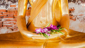 Orchid is on the hand of buddha statue. And  has an ancient flower paintings and bricks are background,  Wat Suthat Thepwararam Bangkok Thailand, Historical Royalty Free Stock Photo
