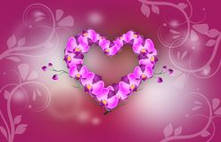 Orchid heart background Stock Images