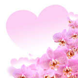 Orchid And Heart Royalty Free Stock Image