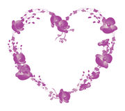 Orchid Heart Royalty Free Stock Photos