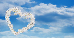 Orchid heart over sky Royalty Free Stock Image