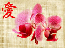 Orchid and hieroglyph love. Beautiful pink orchid and hieroglyph love on old papyrus Stock Images