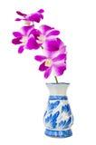 Orchid i vase Fotografering för Bildbyråer
