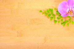 Orchid and leaves of fern on bamboo wooden  background Stock Photography