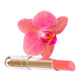 Orchid with lipstick Royalty Free Stock Photo