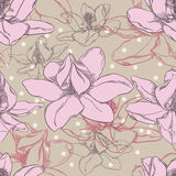 Orchid Pattern Stock Photos