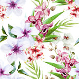 Orchid pattern. Beautiful vector pattern with watercolor orchid flowers vector illustration