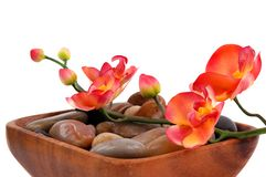Orchid and pebbles Stock Photos