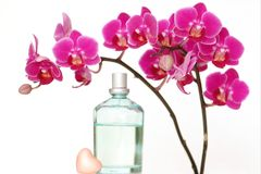 Orchid perfume. A perfume bottle, a heart-shaped piece of soap and an orchid Royalty Free Stock Photos