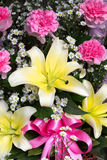 Orchid for sale. Street vendor Royalty Free Stock Photo