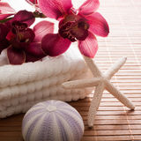 Exotic escape with female touch. Orchid and sea symbols for exoticism from your bathroom Royalty Free Stock Image