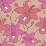 Orchid seamless pattern. Seamless pattern background with orchid flowers Royalty Free Stock Photo