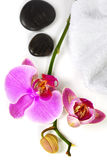 Orchid Spa Composition Stock Photography