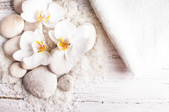 Orchid spa concept Stock Photography