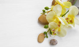 Orchid spa setting Royalty Free Stock Photos