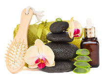 Orchid spa treatment Stock Photography