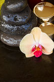 Orchid spa treatment Royalty Free Stock Photos