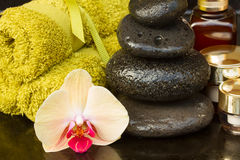 Orchid spa treatment Royalty Free Stock Image