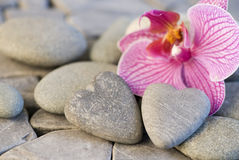 Orchid and stoneheart Stock Photos