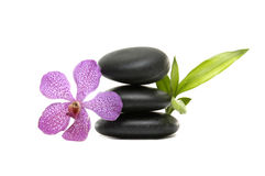 Orchid and stones. Pink orchid and stones with bamboo leaf on the white background Royalty Free Stock Photo