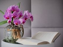 Orchid on a table with a open book stock photo