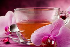 Orchid Tea Stock Image