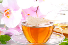 Orchid tea Royalty Free Stock Photography