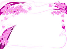 Orchid text frame Stock Image