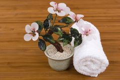 Orchid and Towel Royalty Free Stock Images