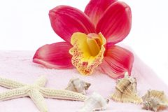 Orchid towel decoration Royalty Free Stock Photos